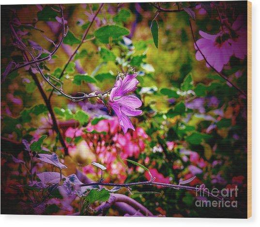 Opulent Lily Wood Print