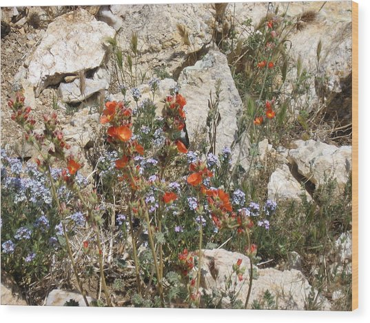Orange And Blue Flowers Wood Print by Joan Taylor-Sullivant