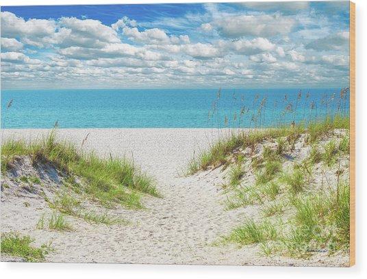 Orange Beach Al Seascape 1086a Wood Print