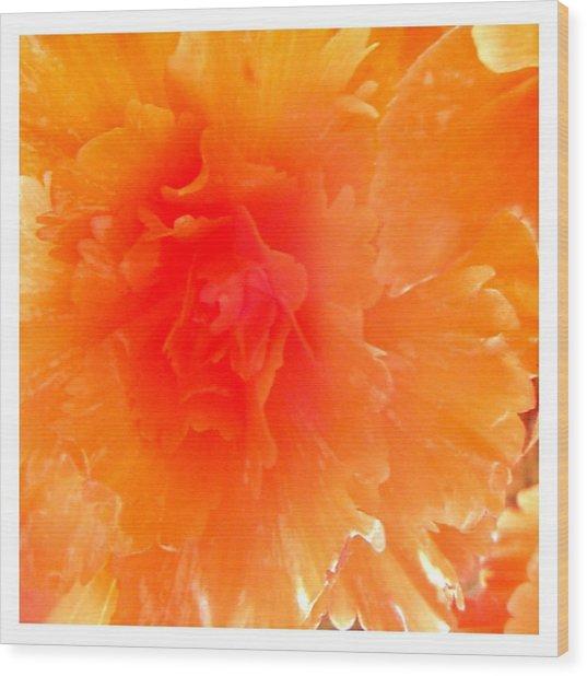 Orange Blast Wood Print