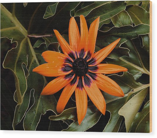 Orange Demeanor  Abstract Wood Print by Debbie May