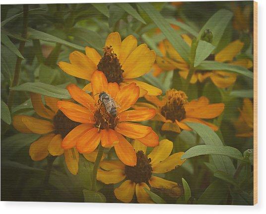 Orange Flowers And Bee Wood Print