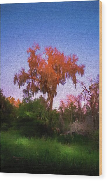 Orange Oak Wood Print
