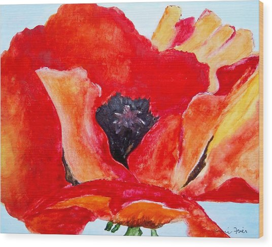 Orange Poppy Wood Print