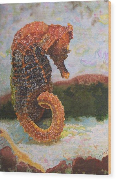 Orange Sea Horse At Rest. Wood Print by Jan  Spangler