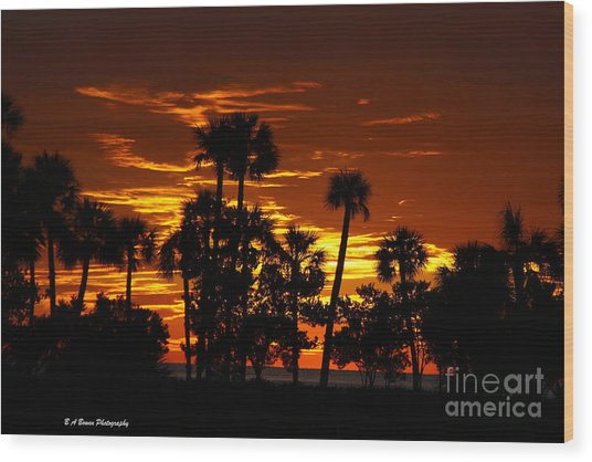 Orange Skies Wood Print