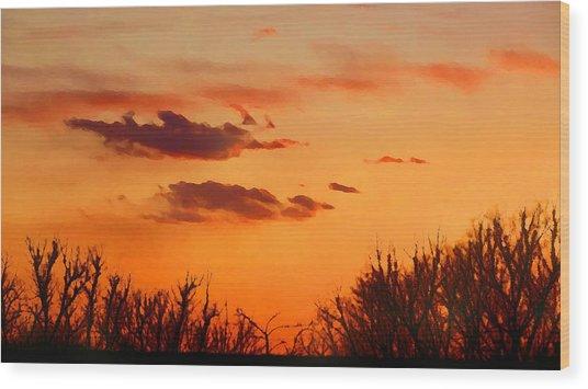 Wood Print featuring the digital art Orange Sky At Night by Shelli Fitzpatrick