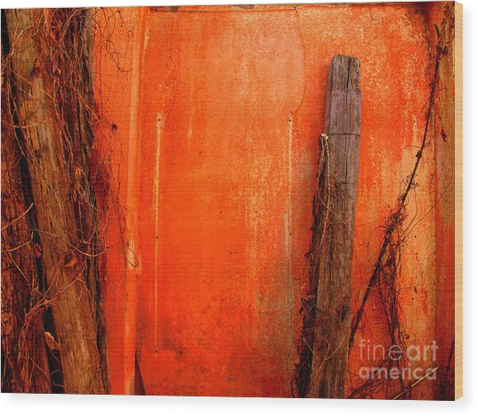 Orange Wall By Michael Fitzpatrick Wood Print