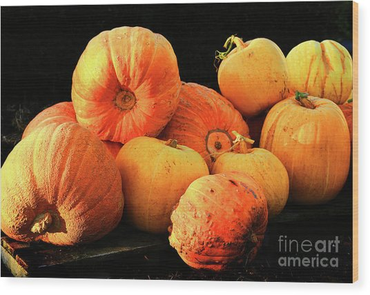 Orange Yellow Pumpkins Wood Print
