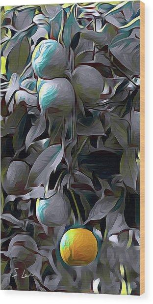 oranges 01 ...46.15 HDR art Wood Print