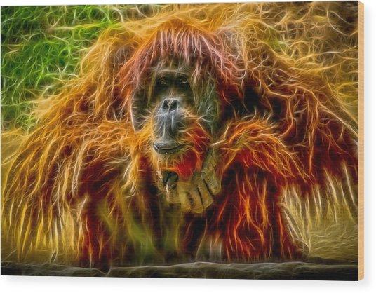 Orangutan Inspiration Wood Print