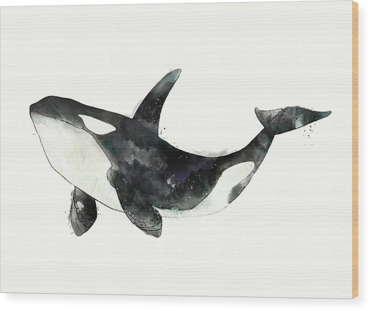 Orca From Arctic And Antarctic Chart Wood Print