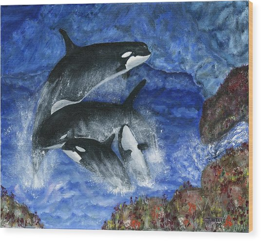 Orcas Family Frolicks Wood Print by Tanna Lee M Wells