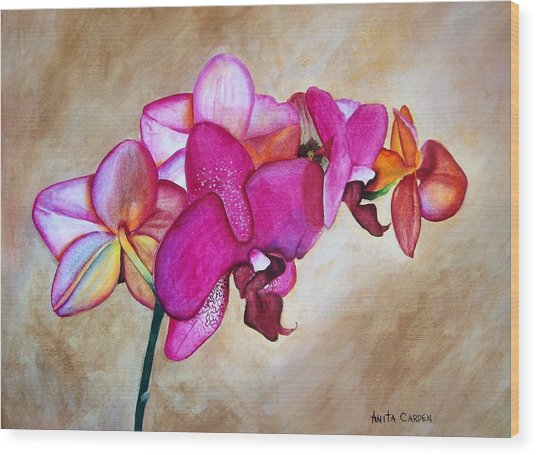 Orchid Wood Print by Anita Carden