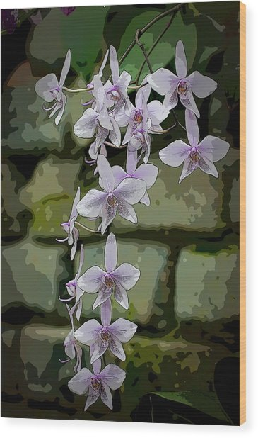 Orchid Waterfall Wood Print