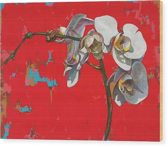 Orchids #1 Wood Print