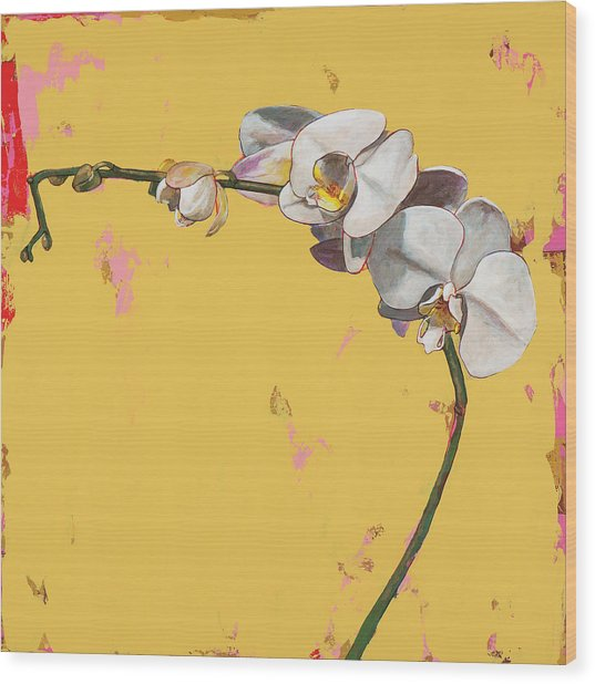 Orchids #3 Wood Print