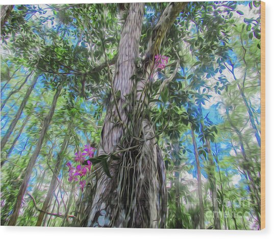 Orchids In A Tree Wood Print