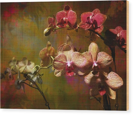 Orchids On Silk Wood Print