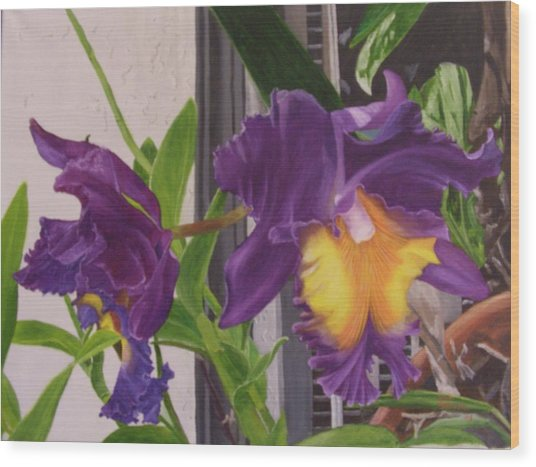 Orchids Wood Print by Robert Silvera