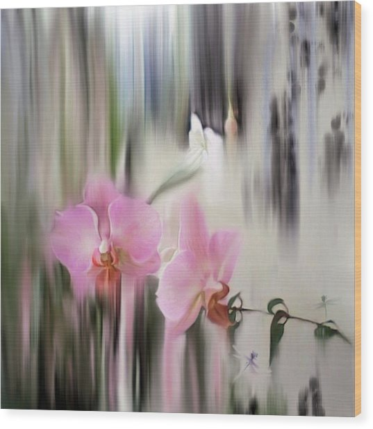 Orchids With Dragonflies Wood Print