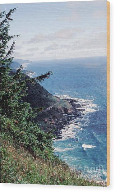 Oregon Coast 2 Wood Print