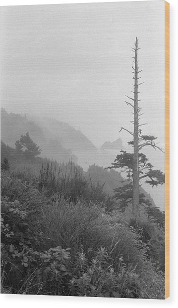 Oregon Coast Wood Print