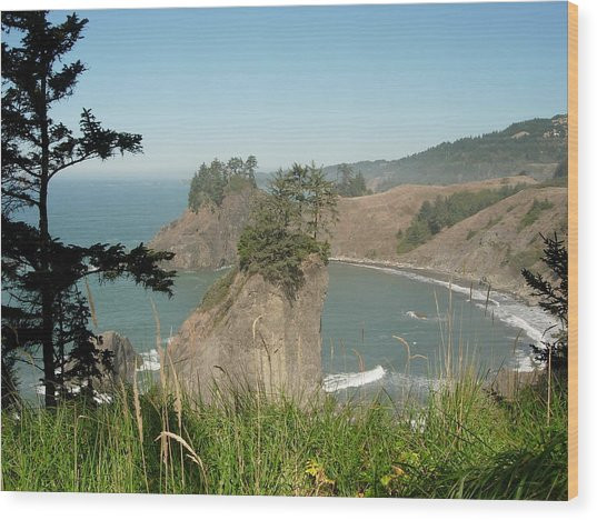 Oregon Coast Near Brookings Wood Print