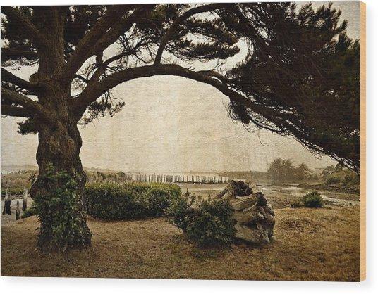 Oregon Coastline With Tree Wood Print