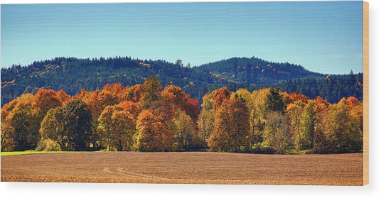 Oregon Fall Wood Print