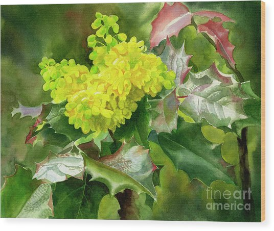 Oregon Grape Blossoms With Leaves Wood Print