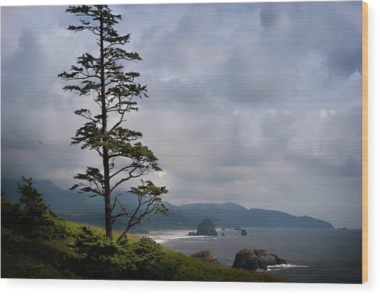 Oregon Ocean Vista Wood Print