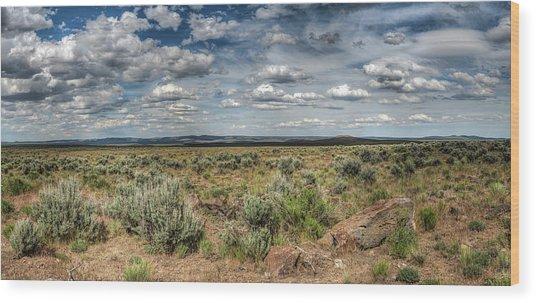 Oregon Outback Wood Print