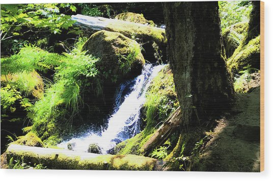 Wood Print featuring the photograph Oregon Spring by Pacific Northwest Imagery