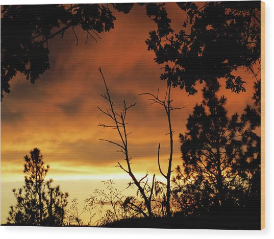 Oregon Sunset Wood Print