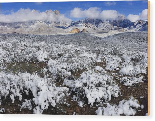Organ Mountains With Snow Wood Print by Patrick Alexander