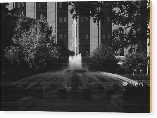 Original Fountain Wood Print