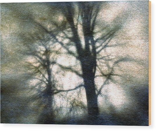 Original Tree Wood Print by Diana Ludwig