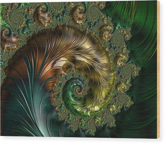 Ornamental Shell Abstract Wood Print