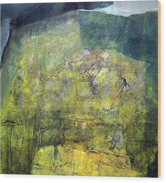 Os1959ar015ba Abstract Landscape Of Potosi Bolivia 20.9 X 21.9 Wood Print by Alfredo Da Silva
