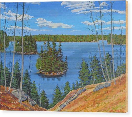 Osprey Island Wood Print