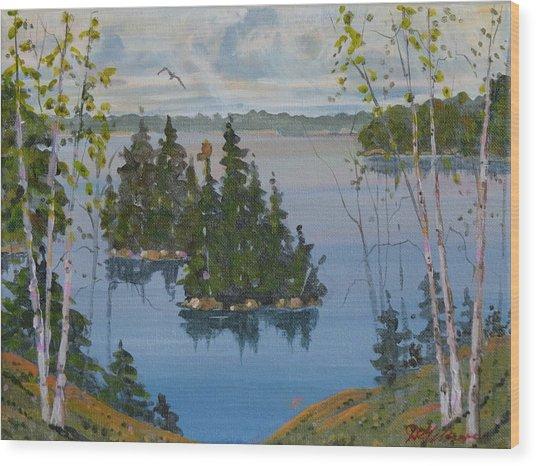 Osprey Island Study Wood Print