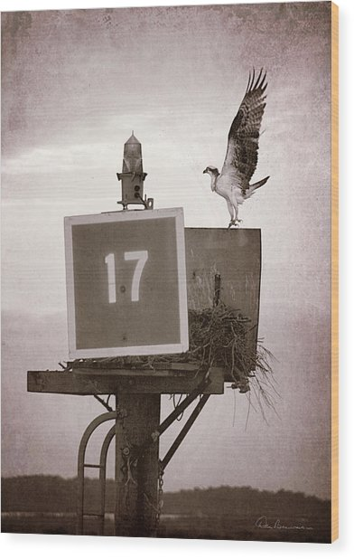 Osprey Landing On Channel Marker 17 Wood Print
