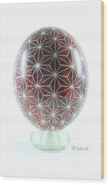 Ostrich Egg Od001 Wood Print