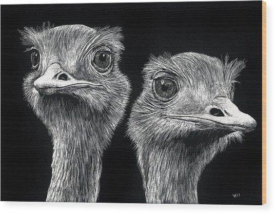 Ostrich Pair Wood Print