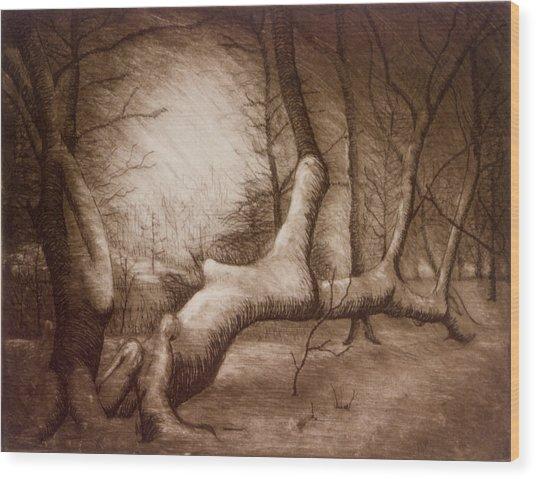 Otsiningo Park Binghamton Ny Wood Print by John Clum