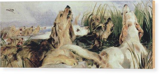 Otter Hounds Wood Print