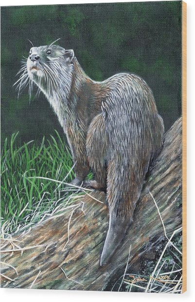 Otter On Branch Wood Print
