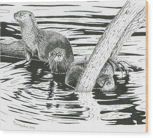 Otters Three Wood Print