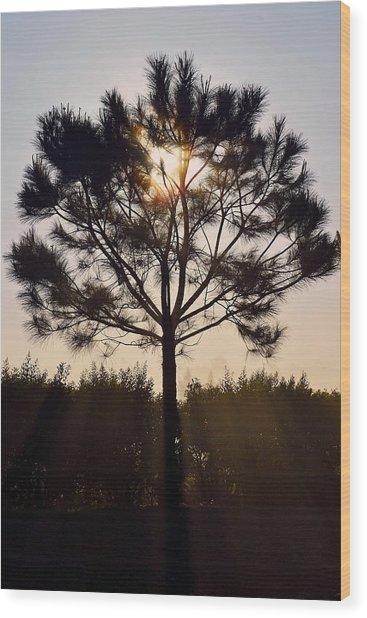 Our Borrowed Earth Wood Print